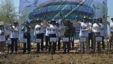 Photo of Wakil Bupati Gresik Tanam 50 Ribu Mangrove Di Pesisir Pantai Ujungpangkah