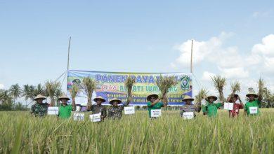Photo of Pemkab Komitmen Optimalkan Pertanian Organik