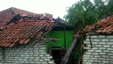 Photo of Pohon Tumbang Di Terjang Puting Beliung Hantam Rumah Warga