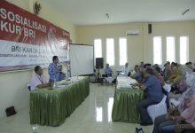 Photo of Program KUR Diharapkan Bisa Tingkatkan Produktivitas Usaha Rakyat di Lumajang