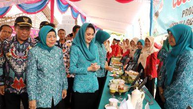 Photo of Cegah Stunting, Arumi Ajak Masyarakat Jaga Kualitas Hidup