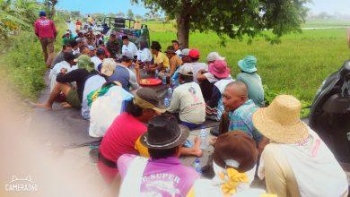 Photo of Danramil 0817/13 Ujungpangkah Turun Sawah