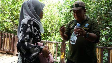 Photo of Lindungi Ekosistem Mangrove, Pemkot Surabaya Larang Pengunjung Bawa Plastik