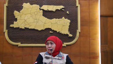 Photo of Hasil Seleksi Program Kartu Prakerja Diumumkan Besok, Tahap I Jatim Dapat Kuota 15.000 Orang