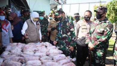 Photo of Gubernur Khofifah Pastikan Makanan untuk Warga Terdampak Covid-19 di Gresik Sudah Lewati Sistem Security Food