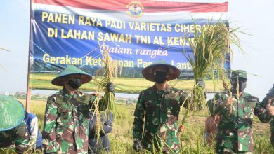 Photo of Danlantamal V Gelar Panen Raya Padi Dalam Rangka Gerakan Ketahanan Pangan Lantamal V