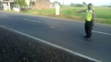 Photo of Pengendara Motor Tabrak Penyebrang Jalan Hingga Tewas