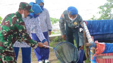 Photo of Ketua Cabang 5 Korcab V DJA II Didampingi Danlanal Batuporon Panen Ikan Lele Hasil P2L