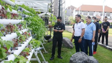 Photo of Pangdam IX/ Udayana Tinjau Langaung Sistem Ketahanan Pangan Yang Diterapkan Di Lanal Denpasar