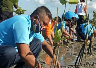 Photo of Jelang Hari Mangrove Sedunia Danlanal Denpasar Hadiri Penanaman Mengrove Di Telaga Waja Tanjung Benoa Bali
