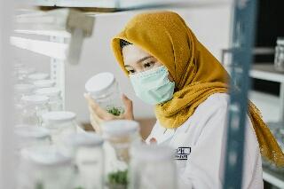 Photo of Unggul Dalam Teknologi, Produk Petrokimia Gresik, Jawab Kebutuhan Spesifik Sektor Agro Industri