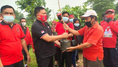 Photo of PDIP Gresik Tanam 200 Pohon Lindung untuk Rayakan Ultah Megawati Soekarnoputri