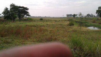 Photo of 7 Desa Berharap Kepada Pemerintah Kabupaten Untuk Segera Menormalisasi Waduk Gogor